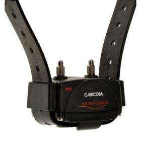 dresūras kaklasiksnas Canicom