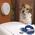 Беспроводной электронный забор Zone-Pet Барьер